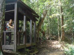 TAMAN NEGARA - 5 tips to avoid Rumble    in the Jungle