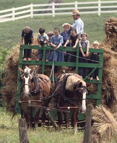 Amish children work hard from an early age, including helping at harvest time. Amish Family, Amish Farm, Amish Country, Country Life, Country Living, Ontario, Amish House, Church Fellowship, Amish Culture
