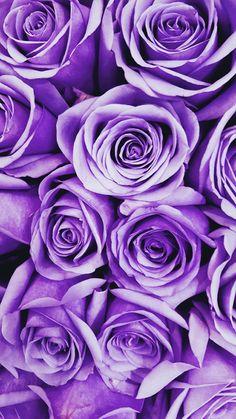Purple Color Inspiration Trend Council Purple Color Inspiration Trend Council The post Purple Color Inspiration Trend Council appeared first on Easy flowers. Purple Love, Pastel Purple, All Things Purple, Purple Rain, Shades Of Purple, Lilac, Purple Colors, Purple Stuff, Lavender Aesthetic