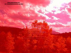 Pikes Peak Reds October 2012 by MSchmidtPhotography.deviantart.com
