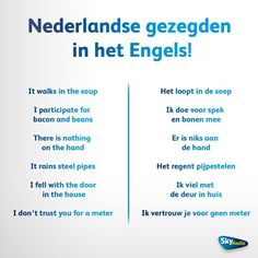 Image result for it rains steel pipes in dutch
