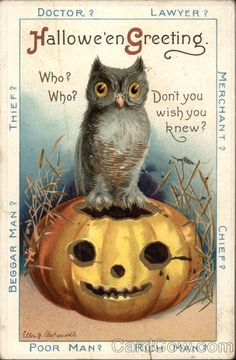 Vintage postcard/ Owl & Pumpkin  I found it interesting what is written in the margins has nothing to do with Halloween. Not to my knowledge any how.