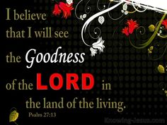 Psalm 27:13 The Goodness Of The Lord (black)