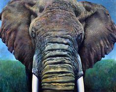 "Saatchi Online Artist carl henderson; Painting, ""elephant"" #art"