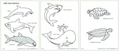 Download, Print, & Color the Deep Sea Animal Coloring Pages