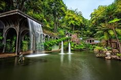 The Most Beautiful Botanical Gardens in Madeira!