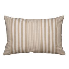 Sea Scatter Cushion Natural 40 X 60cm | Volpes