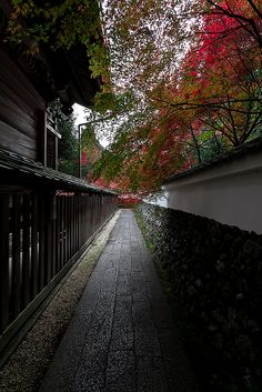 Kyoto, Japan. #japan #Kyoto #travel