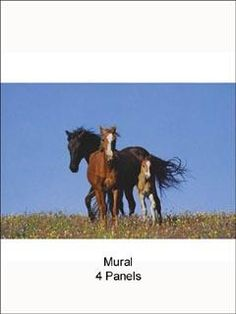 Wild Horses - Murals