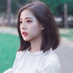 Haircuts Straight Hair, Bob Hairstyles For Thick, Haircuts With Bangs, Girl Haircuts, Long Hair Cuts, Hairstyles Haircuts, Korean Short Haircut, Kpop Hair, Jennie Lisa