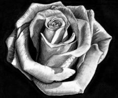 I love the person who drew this, I almost thought it was a black and white photo until I got to the site it was on. I like the shape, texture, and shade.