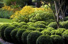 Project Galleries - Garden and Landscape Design