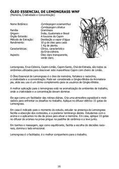 ÓLEO ESSENCIAL DE MELALEUCA WNF - Tea tree(Sistema Imunológico)Nome Botânico:  Melaleuca alternifoliaFamília: Mirtáce...