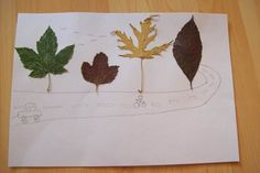 picture from leaves..raod and trees