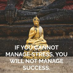 If you cannot #manage #stress, you will not manage #success. - Quote of the day -
