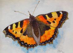 Aquarell: Schmetterling - Jutta Bachmann
