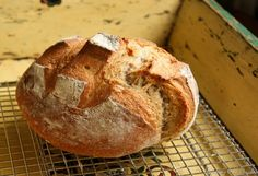 This is it! the 2hour version of 5 minute artisan bread!  french boule bread