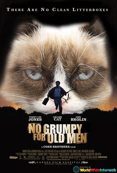 Movies that would have been better if Grumpy Cat starred in them.