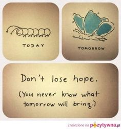 Just when the caterpillar thought the world was over...he became a butterfly!