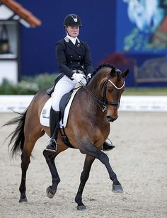 Foreign Affair Bought by Rothenberger Family from Patrik Kittel – Dressage-News