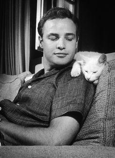 Marlon Brando and his kitteh, circa 1950s