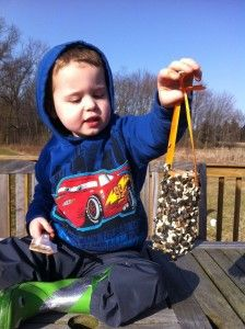 make our own bird feeders