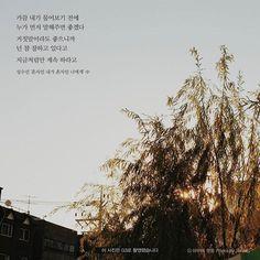 Quotations, Qoutes, Korean Language, Wise Quotes, Sentences, Poems, My Life, Encouragement, Typography