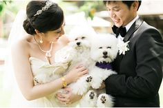 Two pups! A Los Angeles Wedding Photographed by Jeremy Chou