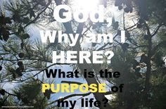 God, Why am I here? What is the purpose of my life? #faith #God #purposelife…