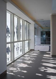 Hawkins\Brown, Tim Crocker · New Biochemistry building. University of Oxford Partition Screen, Biochemistry, Contemporary Architecture, Oxford, University, England, Windows, Lighting, Brown