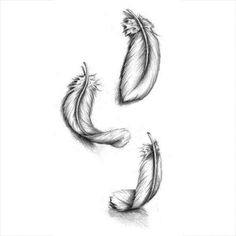 comment dessiner une plume d oiseau - Trend Noodle Side Dish Recipes 2019 Feather Sketch, Feather Drawing, Feather Tattoo Design, Feather Art, Tattoo Bird, Small Feather Tattoos, Pheonix Feather, Shaded Tattoos, Peacock Tattoo