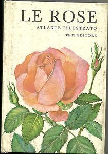 Le Rose Atlante illustrato  testo Ludvik Vecera ill. Jirina Kaplicka  Nicola Teti Editore Milano1973