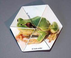 triflexagon - including a printable pattern from cutoutfoldup.com