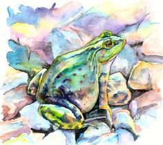 Frog Painting by Christy Freeman - Frog Fine Art Prints and Posters for Sale