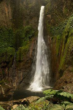 Catarata Del Toro waterfall, Bajos Del Toro Amarillo, Sarchi, Costa Rica by debbie_dicarlo
