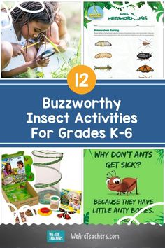 These insect activities, including hands-on projects, videos and more, help students in grades K-6 learn about these amazing creatures. Insect Activities, Outdoor Activities For Kids, Outdoor Learning, Kids Learning Activities, Student Learning, Fun Learning, Science Lessons, Teaching Science, Life Science