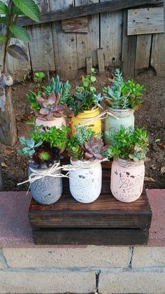 Do you have a small or large backyard? Are you thinking about sprucing out your porch or patio? Well, container gardening is one of the best ways to keep your garden looking beautiful, regardless of the space. Try these container gardening tips for the. Mason Jar Succulents, Succulent Centerpieces, Succulent Arrangements, Cacti And Succulents, Planting Succulents, Planting Flowers, Centerpiece Wedding, Succulent Ideas, Mason Jar Plants