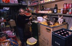 Amazing pictures of inside Kowloon Walled City in Kowloon, Hong Kong. Demolished in 1993-94, these are some pictures of residents, workers, conditions, and the overall city. Awesome stuff.