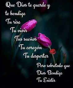 Buenas noches posted on prayer fb page sep 2017 Good Night Quotes, Sweet Cat, Believe, Betty Barclay, Fb Page, Mood, Dating Quotes, Dating Humor, Prayers