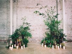 A beautiful ceremony set up Elopement Reception, Wedding Ceremony Backdrop, Garland Wedding, Botanical Wedding, Floral Wedding, Wedding Flowers, Wedding Venue Decorations, Flower Decorations, Pantone