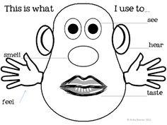 The Five Senses using printable Mr. Potato Head pattern pieces