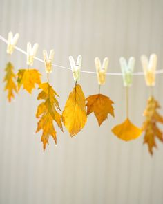 Leave it to Martha to have such a simple but sensational idea! Have the kids collect their favorite leaves, dip them in wax & hang from a decorative line for fabulous Fall Decor! We used a permanent pen and put names of dinner guests on some leaves before we dipped them in wax. They turned out fine making beautiful place cards with a little ribbon added!  DIY right here:  http://www.marthastewart.com/917692/hanging-leaves?xsc=eml_hws_2009_09_24 35 Fabulous Fall Decor Ideas - The Cottage…