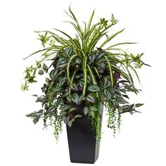 Indoor Container Gardening This artificial wandering jew and spider plant combine to artfully spill over the edge of the elegant black tower planter they come in. The best thing? It's artificial so the plants never outgrow their perfect arrangement! Container Flowers, Container Plants, Container Gardening, Silk Plants, Foliage Plants, House Plants Decor, Plant Decor, Uk Plant, Wandering Jew