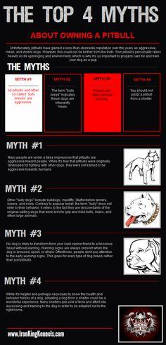 debunking more myths about #pitbulls