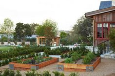 raised bed containers for vegetable garden design