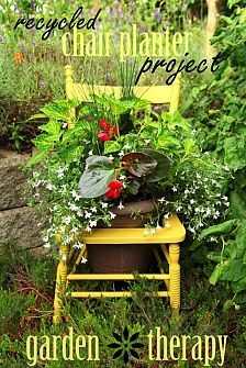 container gardening ideas :: Donna Dixson's clipboard on Hometalk :: Hometalk