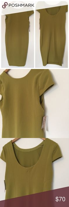 """Philosophy   Cap Sleeve Dress Stunning cap sleeve dress from Philosophy. Green color called Fennel. Would look great on many skin tones 😊 high neck in the front and scoop in the back. Fits close to the body, fully lined, amazing structure. NWT! Perfect for upcoming weddings. 17.5"""" underarm span and 40"""" from shoulder to hem. Polyester and spandex blend. Philosophy Dresses"""