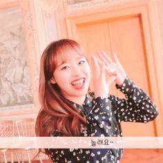 K Idols, Kawaii, Kpop, Cute, Wallpapers, Toddler Girls, Pictures, Wallpaper