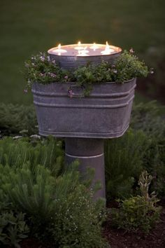 tin bucket bird bath with floating candles