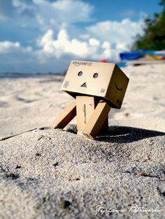 Danbo - beach!!
